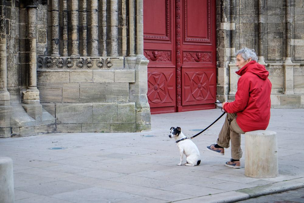 ©Valérie Jardin - street dogs-14.jpg
