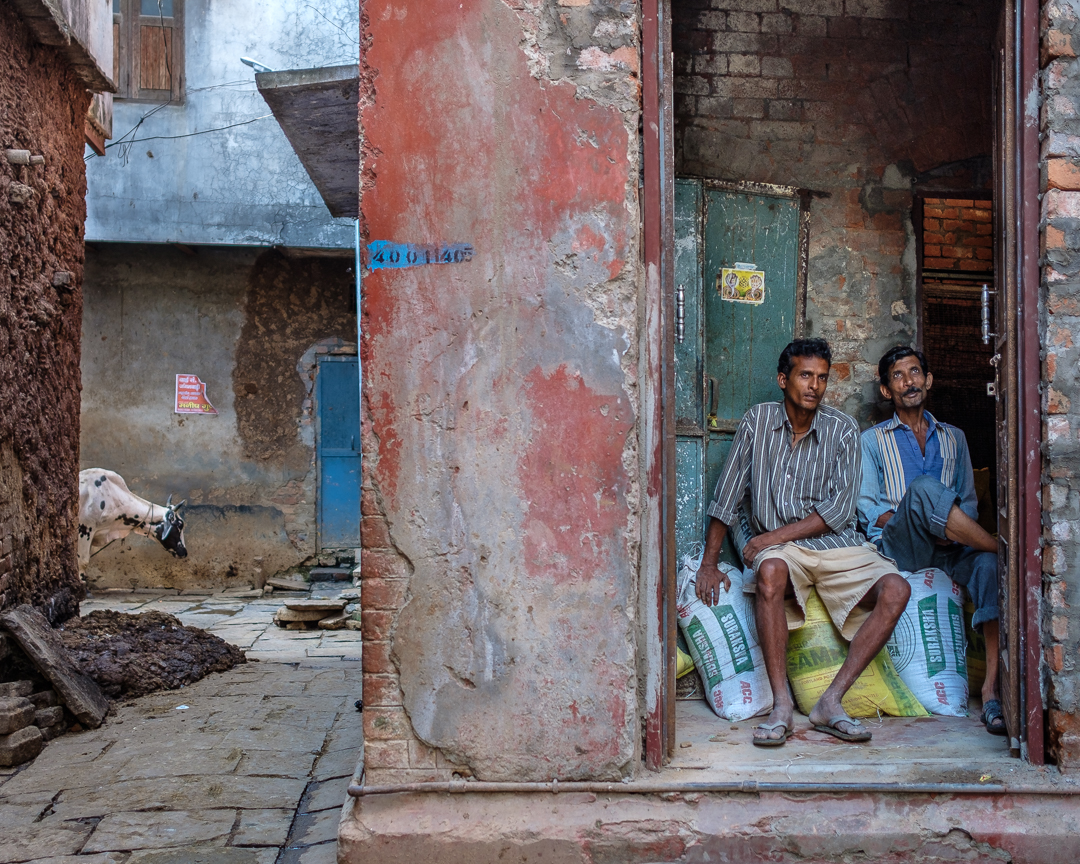 ©David Julian_INDIA, Varanasi, a cow and two gentelmen-0770.jpg