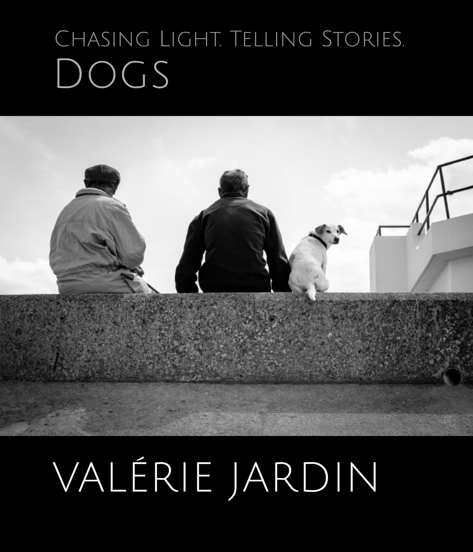 Chasing Light -- Dogs cover.jpg
