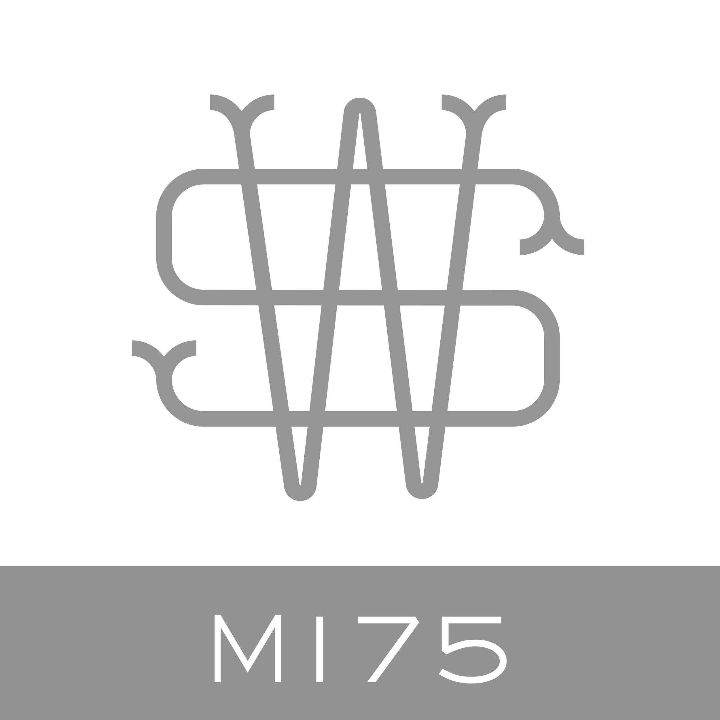 M175.jpg