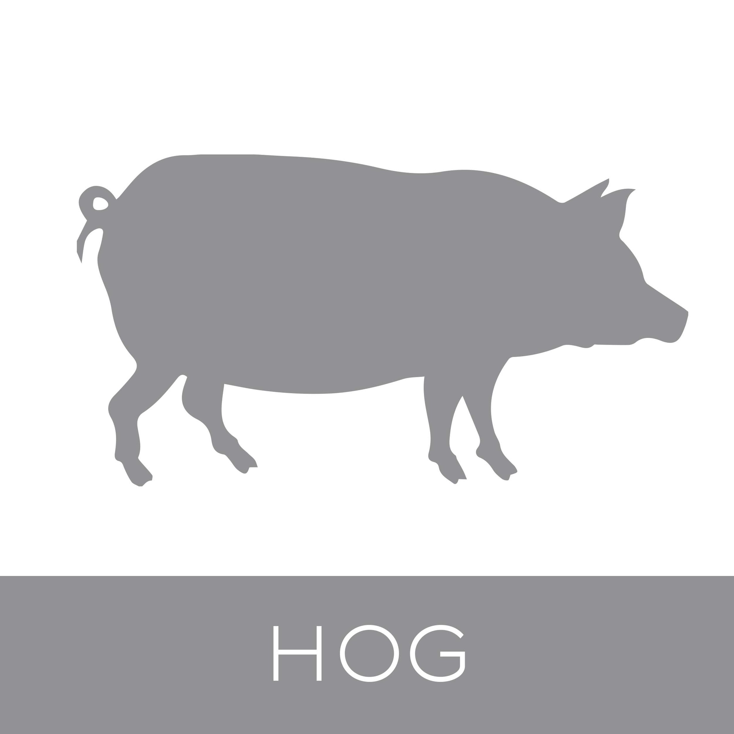 hog.jpg