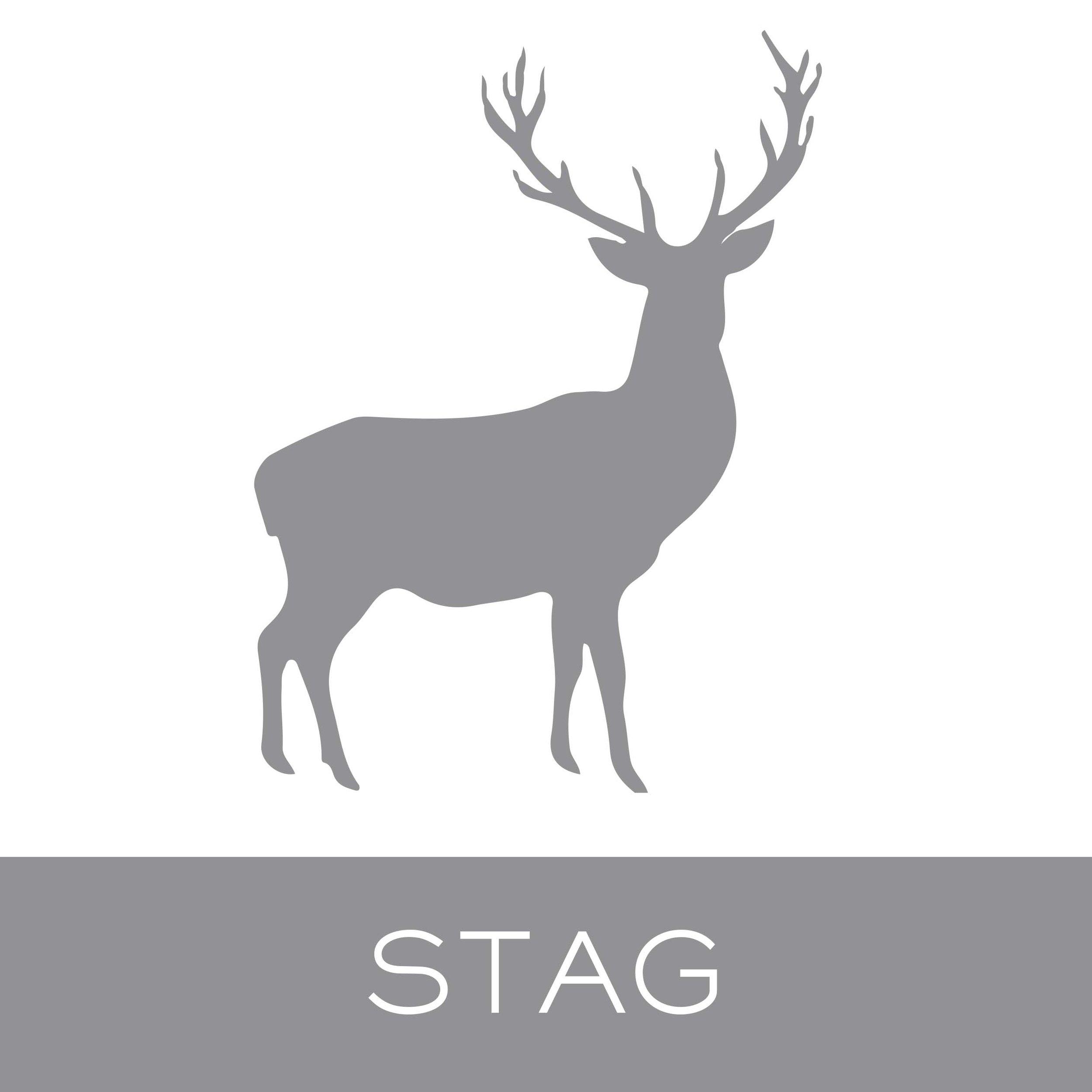 stag.jpg