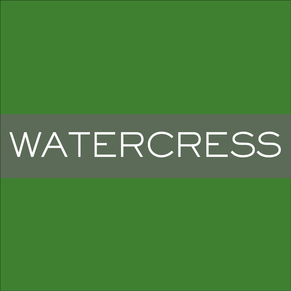 INK_Watercress.jpg