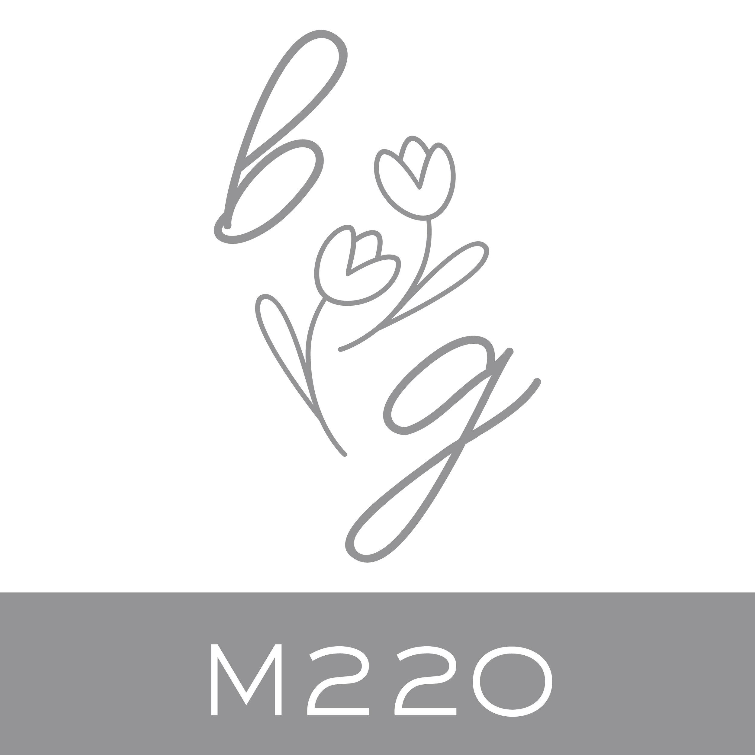 M220.jpg