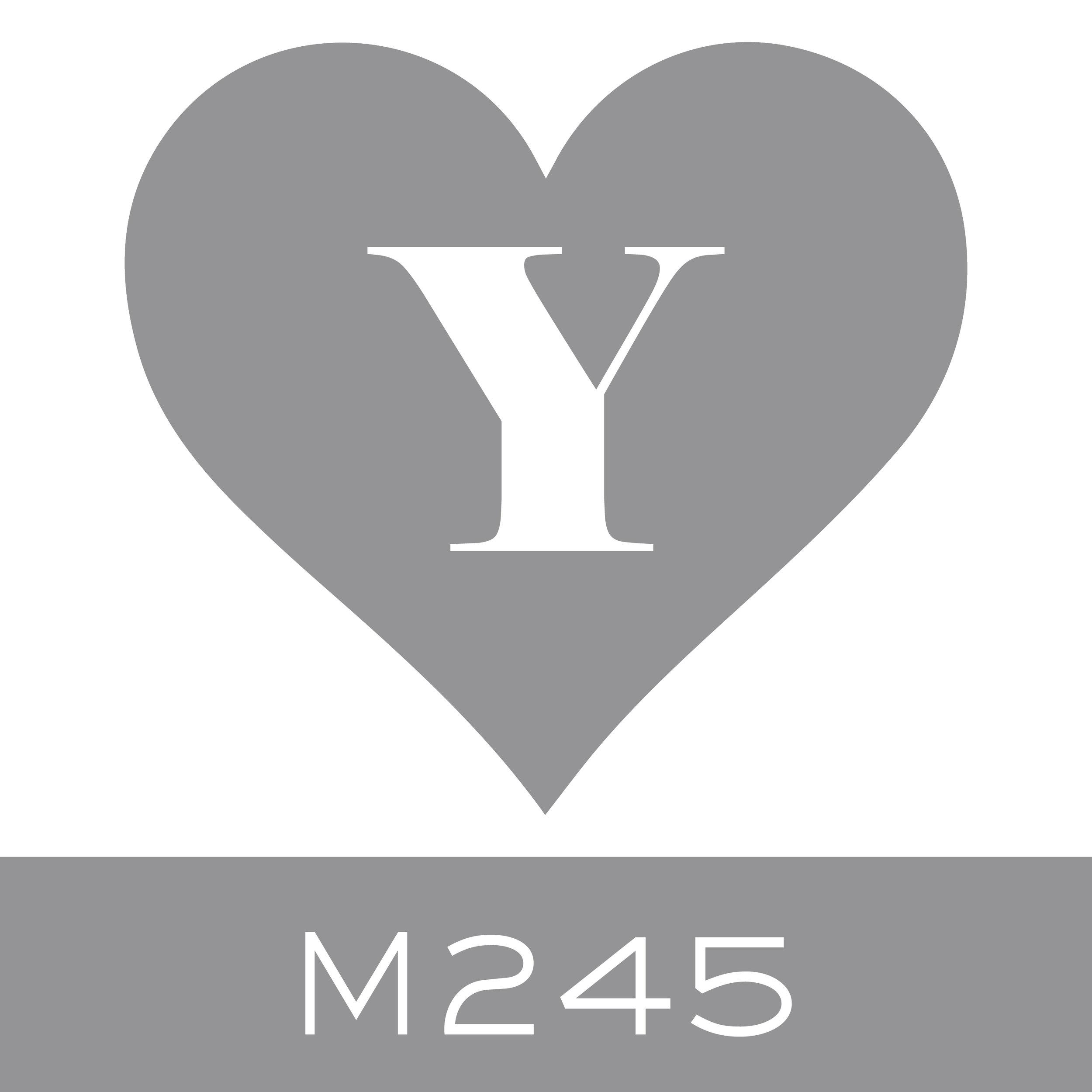 M245.jpg