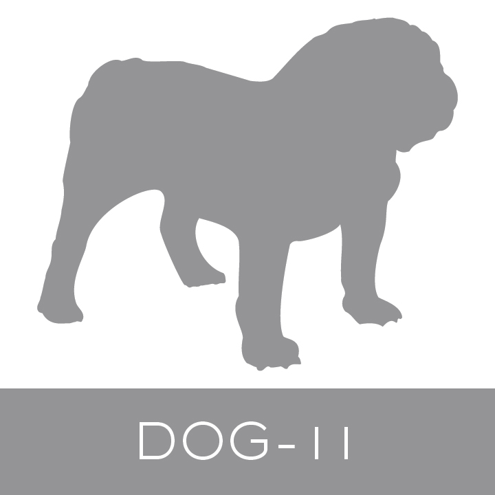 dog-11.jpg