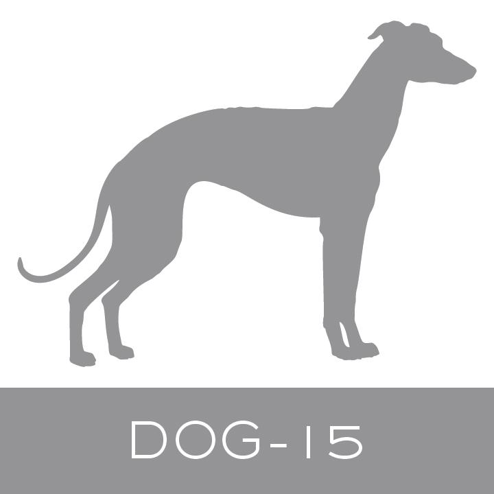 dog-15.jpg