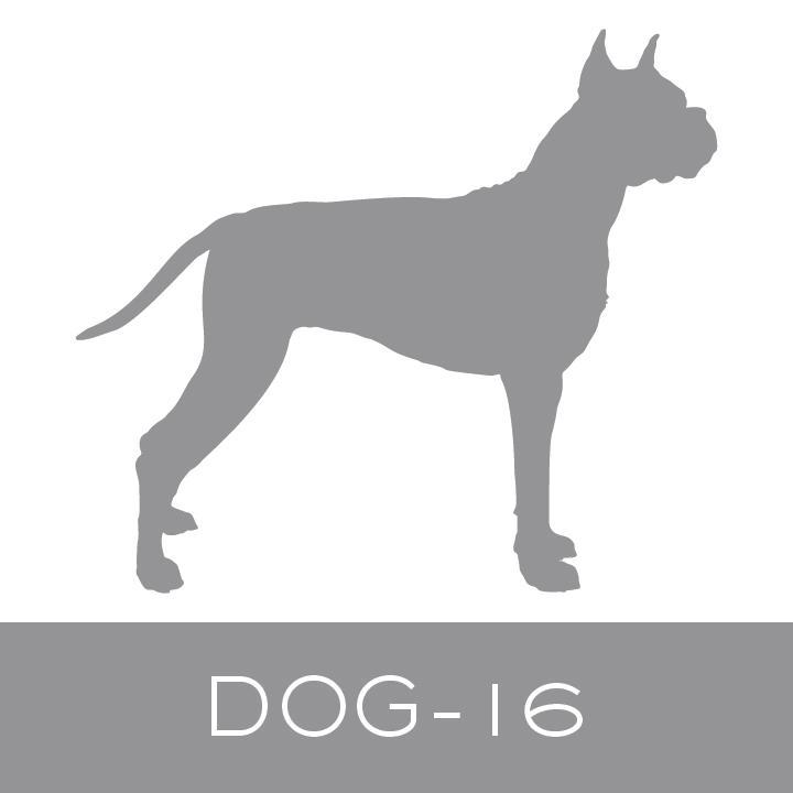 dog-16.jpg