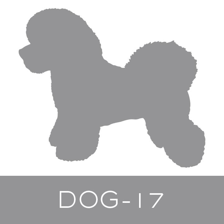 dog-17.jpg