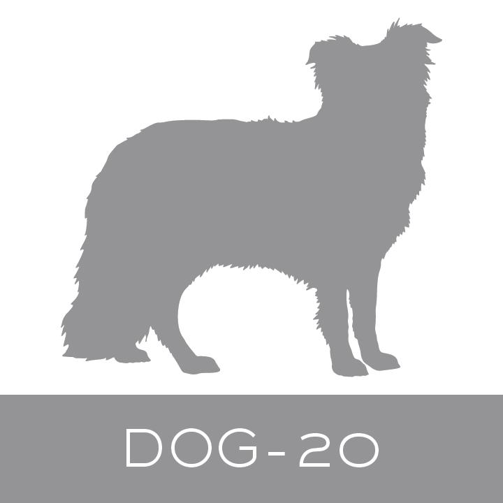 dog-20.jpg