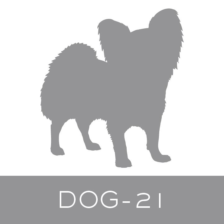 dog-21.jpg