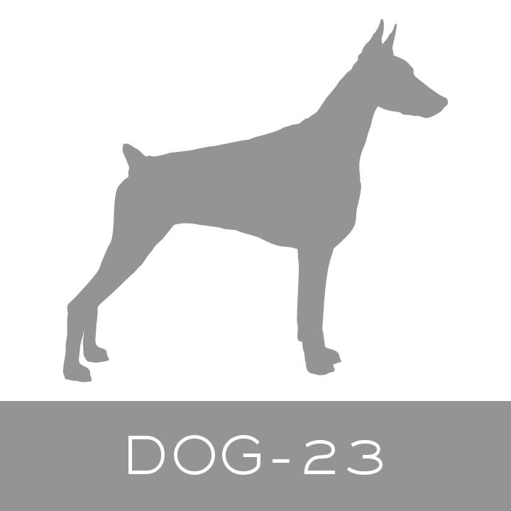 dog-23.jpg