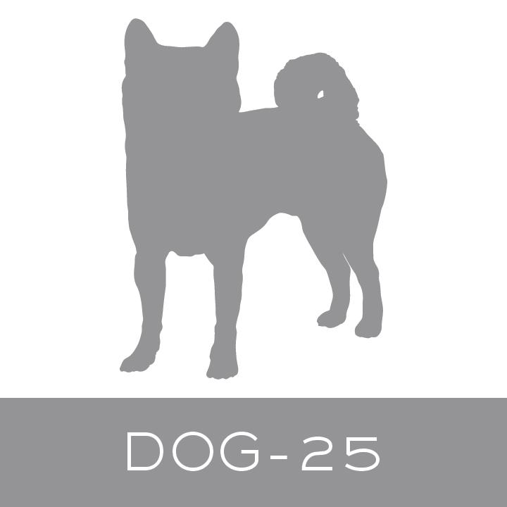 dog-25.jpg
