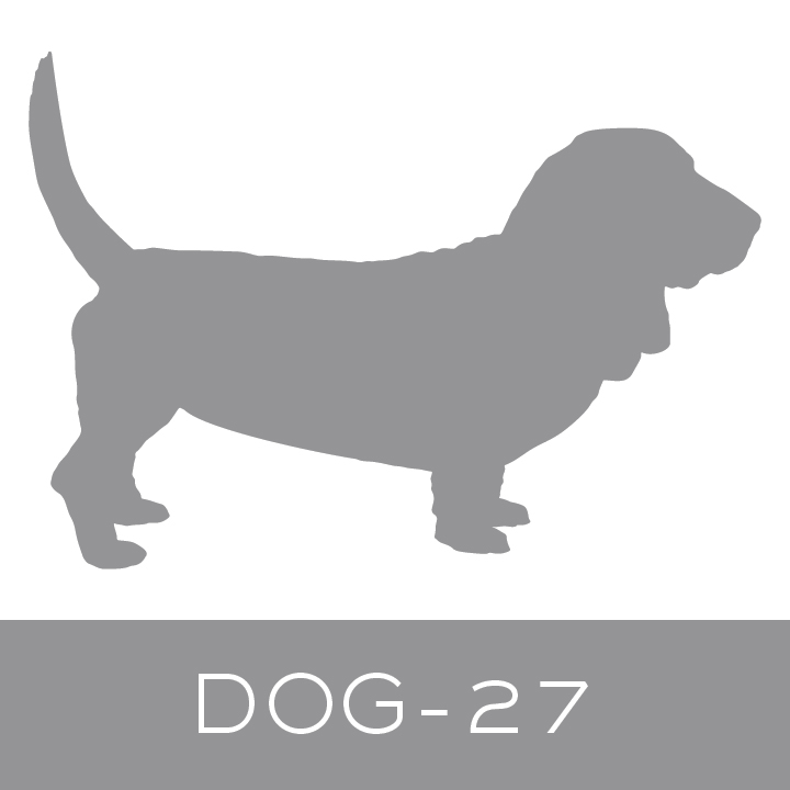 dog-27.jpg