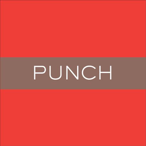 BN_Duplex_Punch.jpg