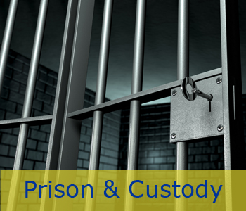 Expert Witness Prison and Custody