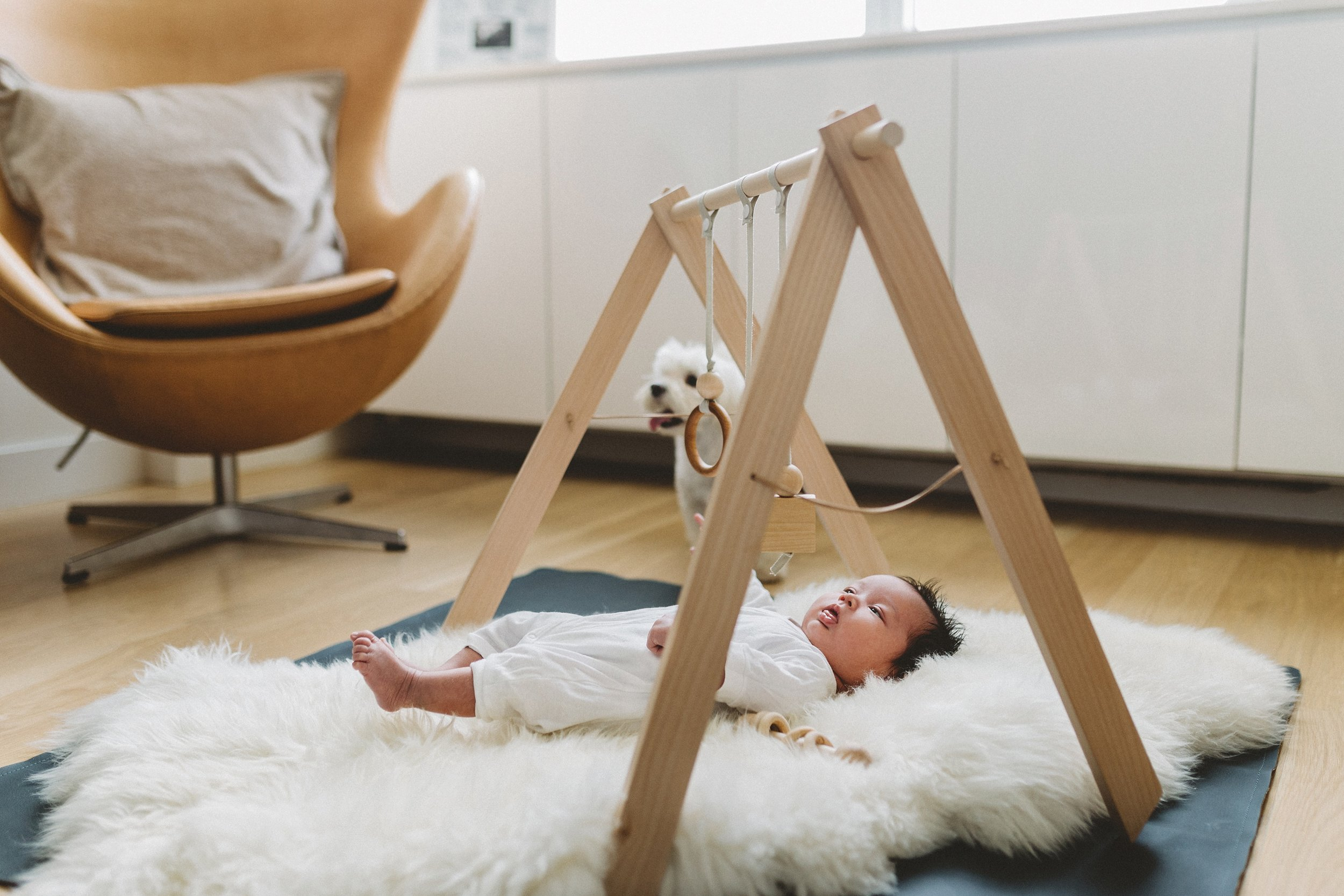 midtown newborn photo session_0056.jpg