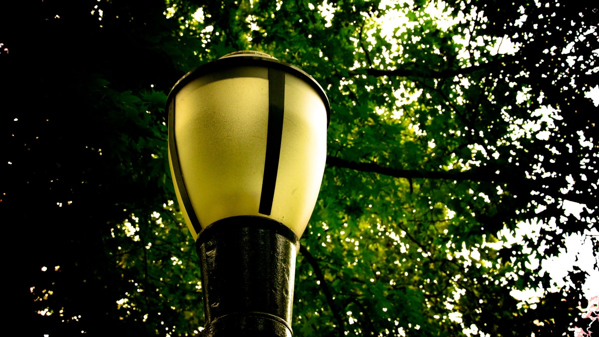 lampshade 8.23 upload 6.jpg