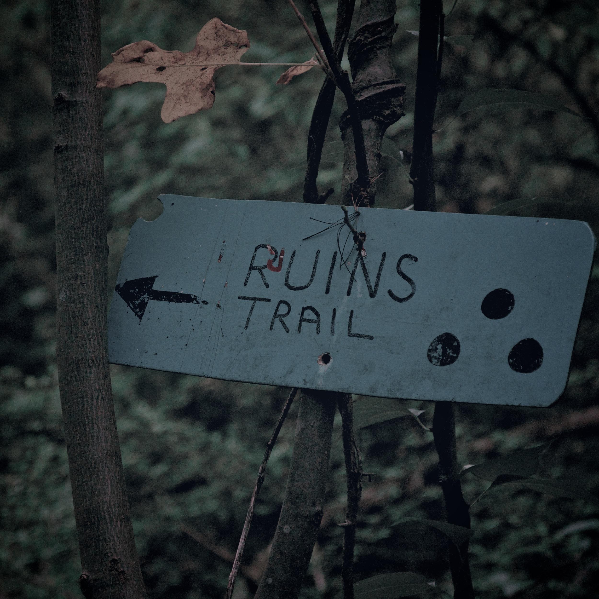 Ruins Trail Export 2.jpg