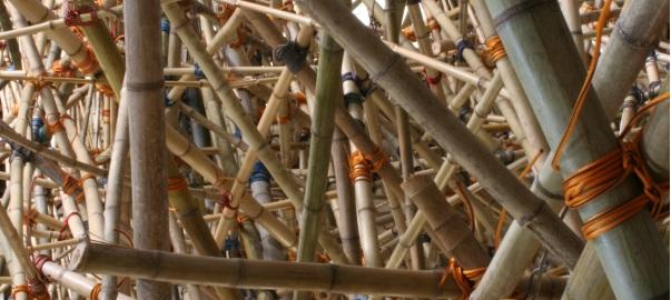 04.07.07_bambu.jpg