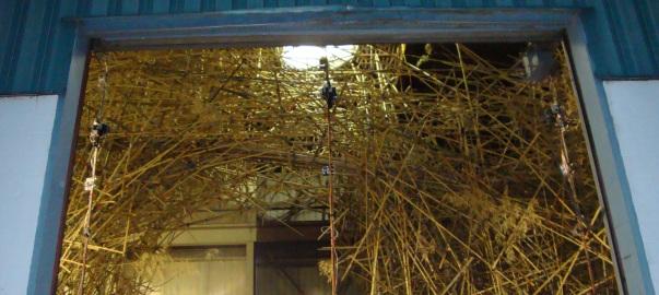 04.07.03_bambu.jpg