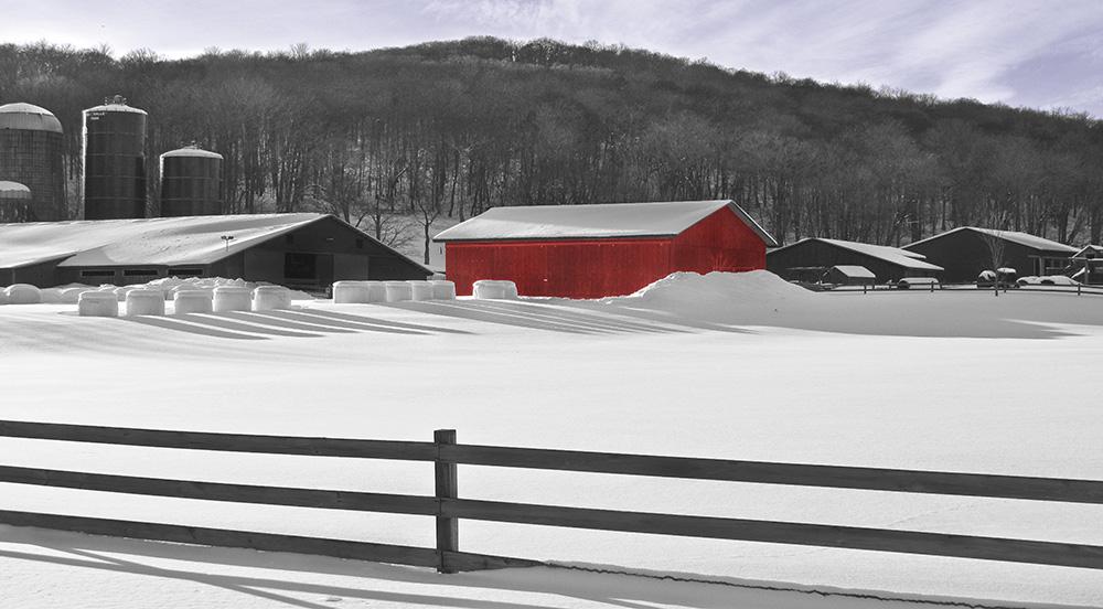 Farm Sunlight Red Barn.jpg