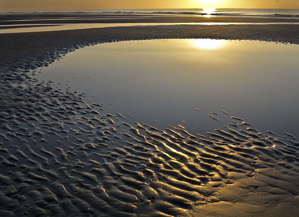 Sunrise Puddles.jpg