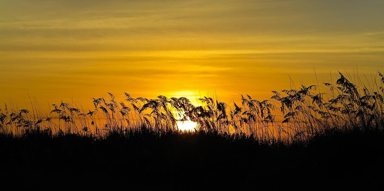 Sunset II HH.jpg