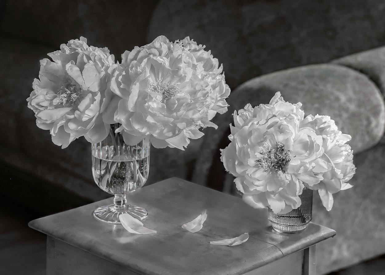 Flowers-A.jpg
