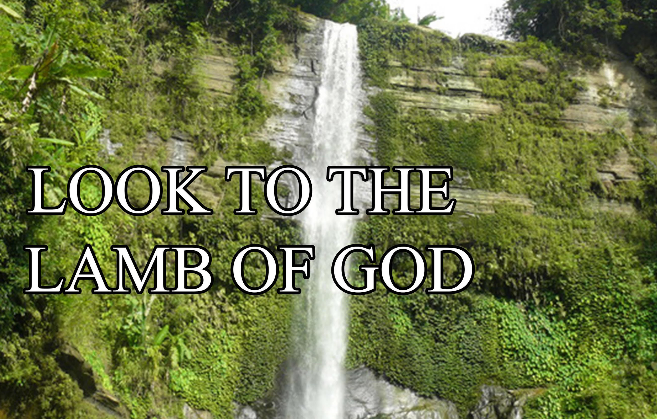 lamb of god.jpg