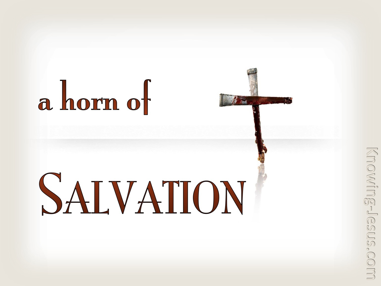 Luke 1-69 He Raised Up A Horn of Salvation beige.jpg