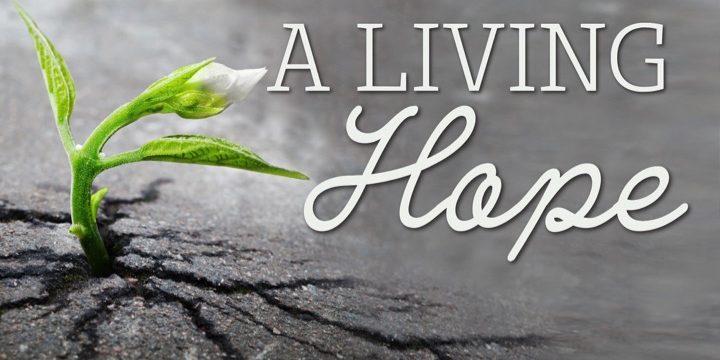 A-Living-Hope-720x360.jpg