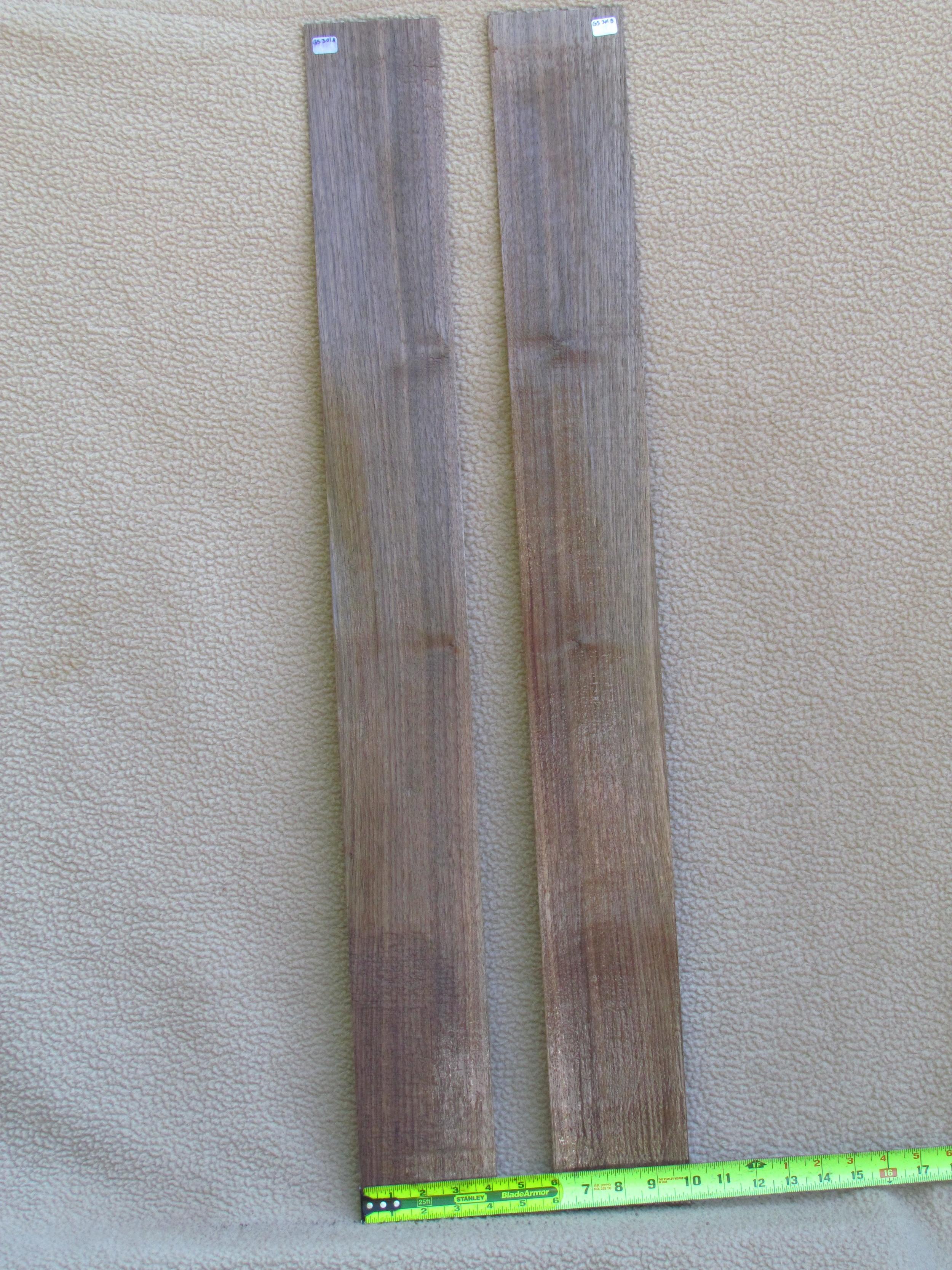 Eastern Black Walnut