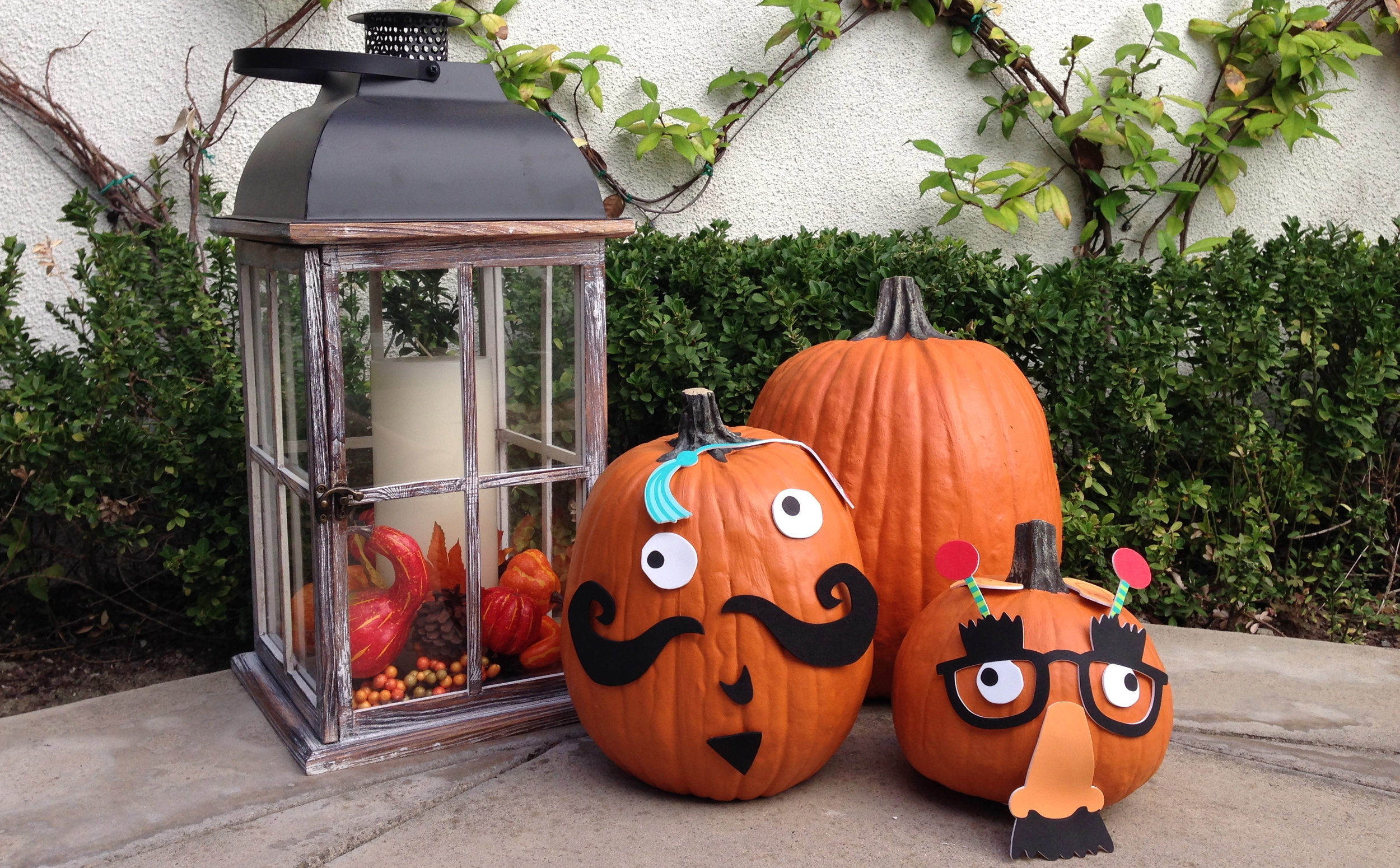 mambi pumpkin decorating kit.  Available at Michaels Stores.  Makes pumpkin decorating easy for almost any age!