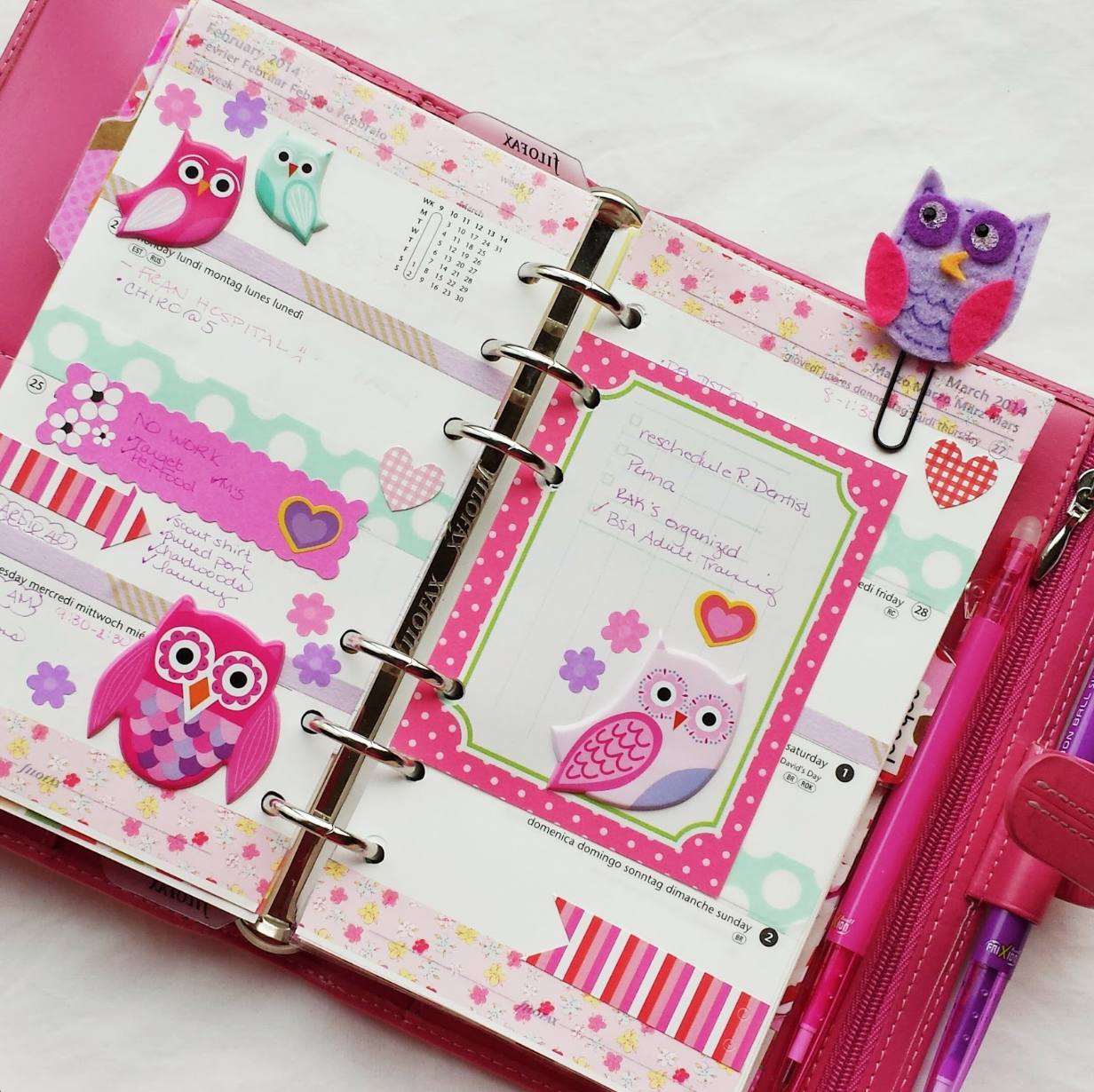 mambi puffy owl stickers used for cute filofax decoration.  Filofaxing and scrapbooking combo.