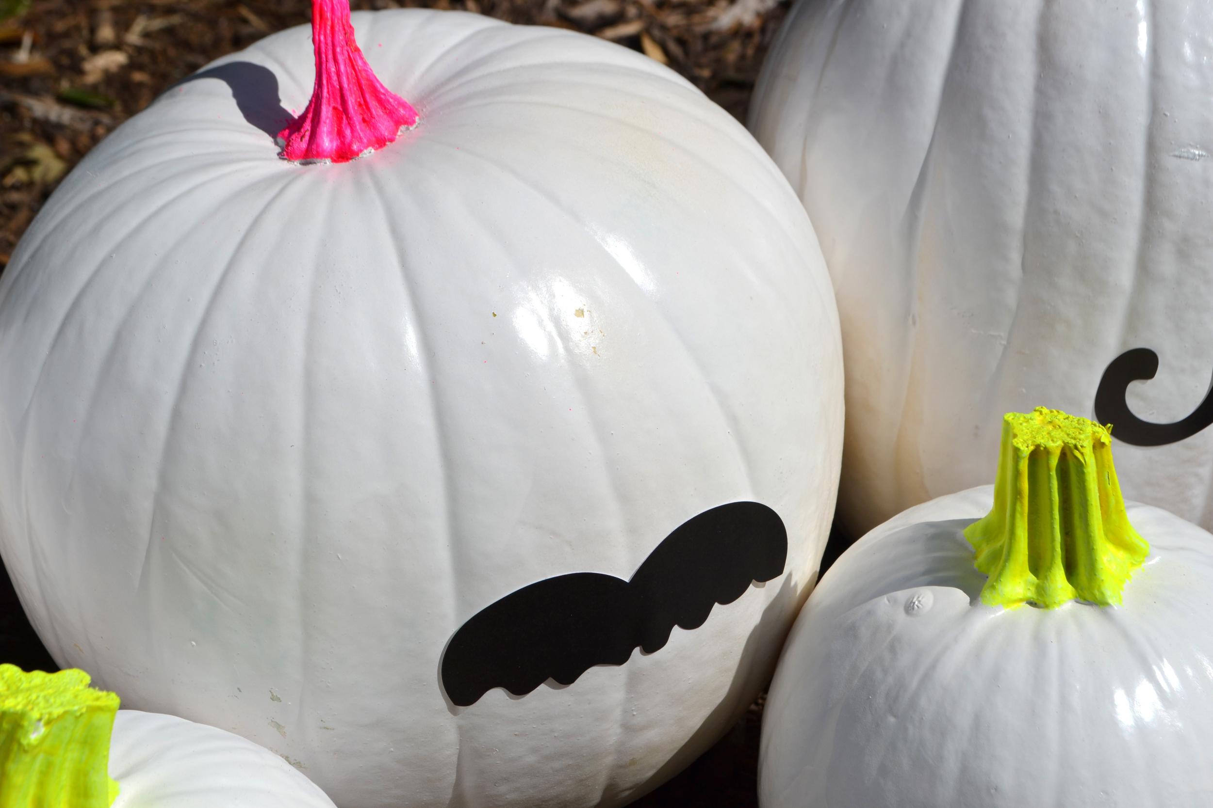 Funky Bunch of Pumpkins 04.jpg