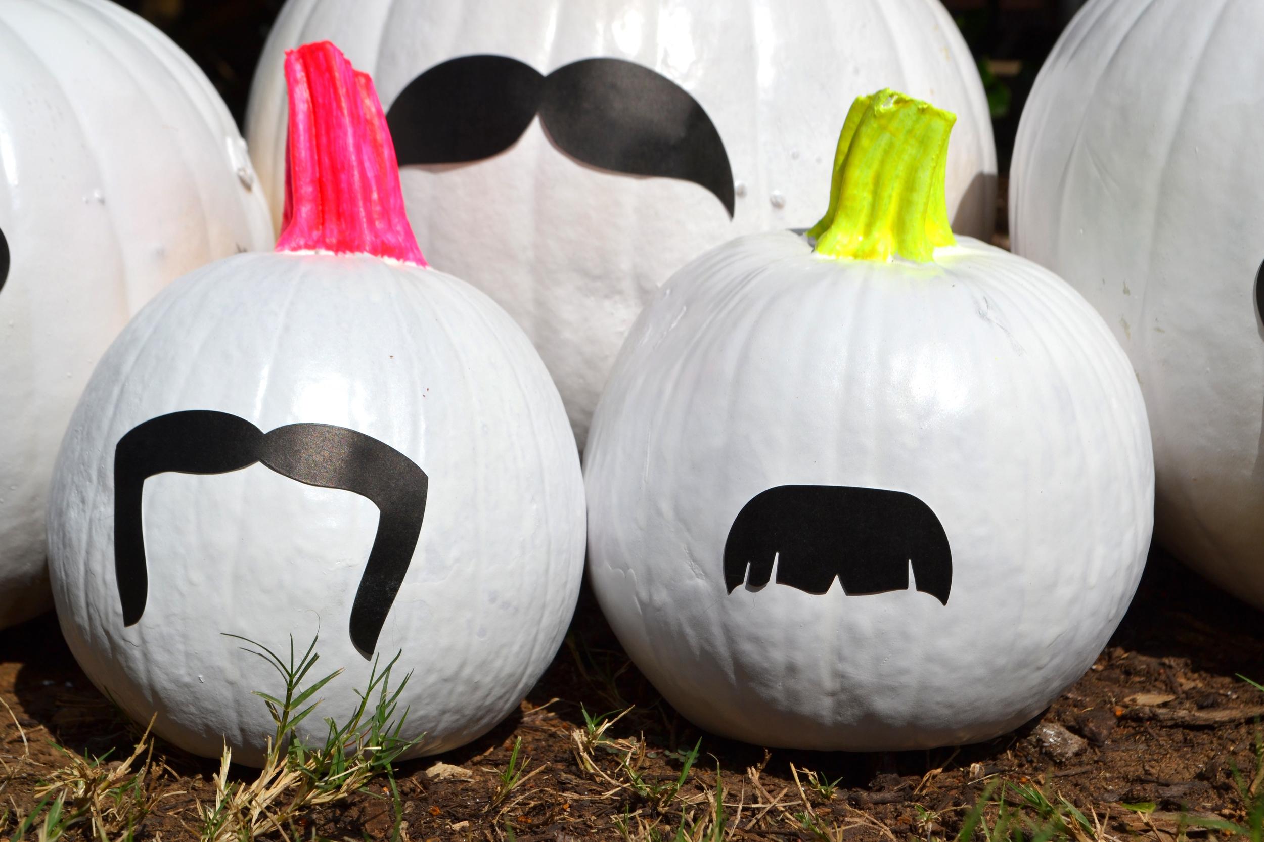 Funky Bunch of Pumpkins 05.jpg
