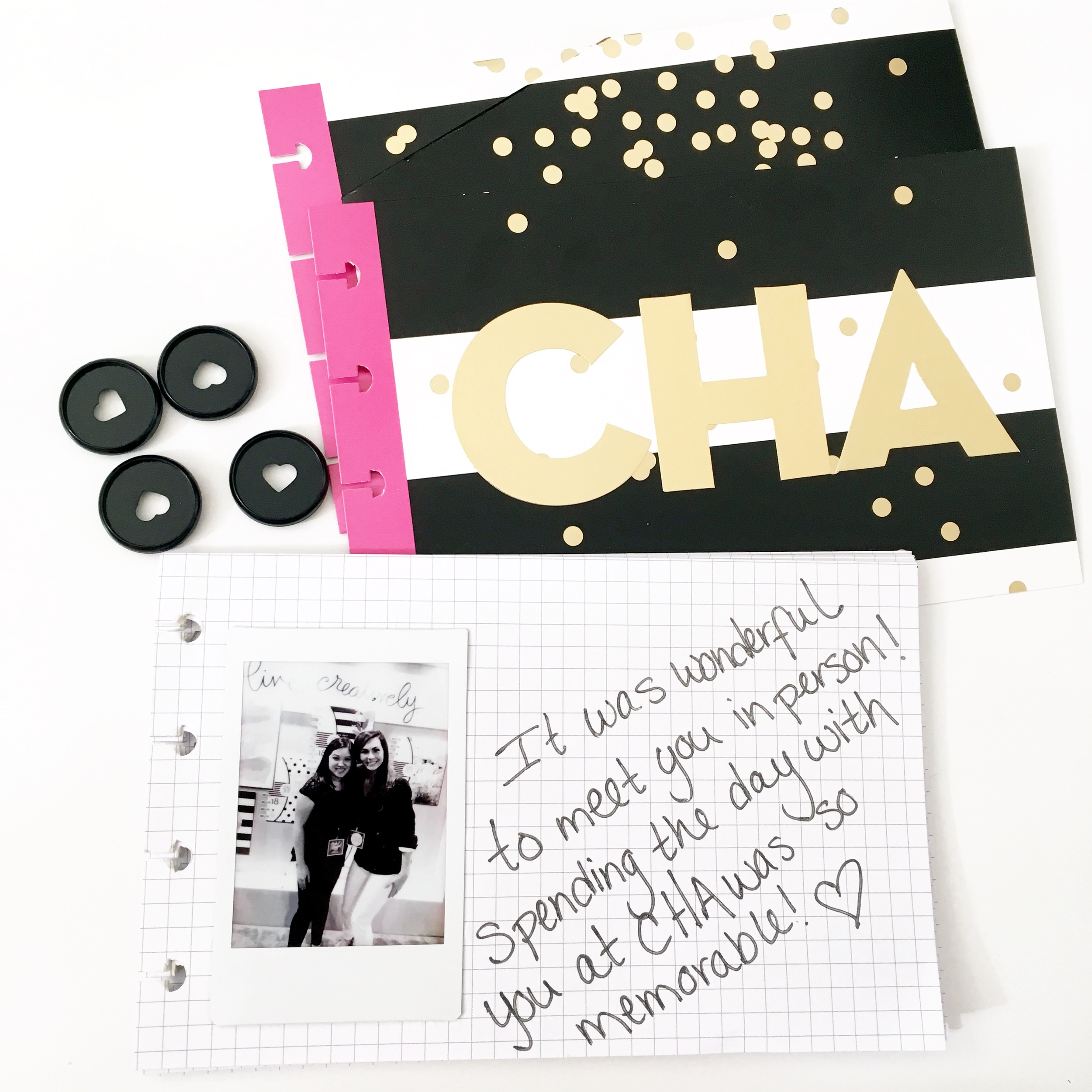 a CHA mini album created by mambi Design Team member Theresa Doan for The Happy Planner? PUNCH-A-PALOOZA | me & my BIG ideas