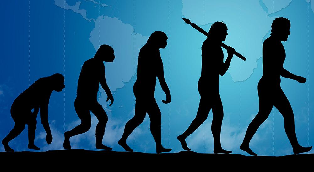 Australopithecus Sediba: ¿Una Innovación Evolutiva?