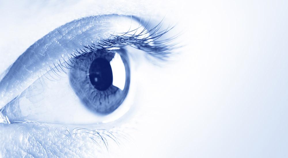 A Través de los Ojos del Salvador