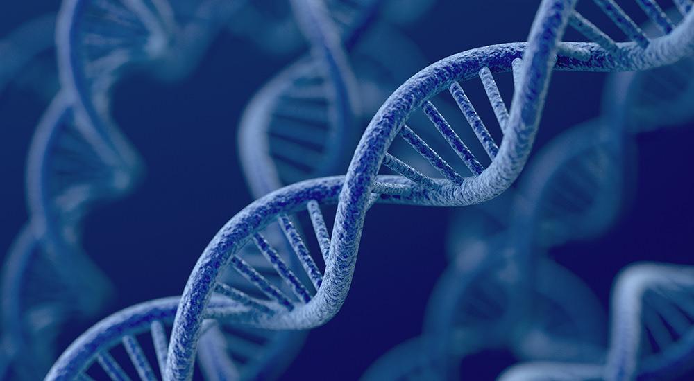 La Genética del Alma