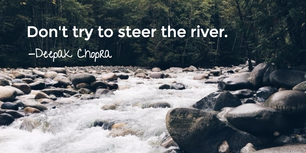 don't try to steer the river