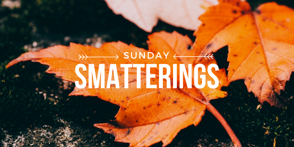 Sunday Smatterings 9.11.16