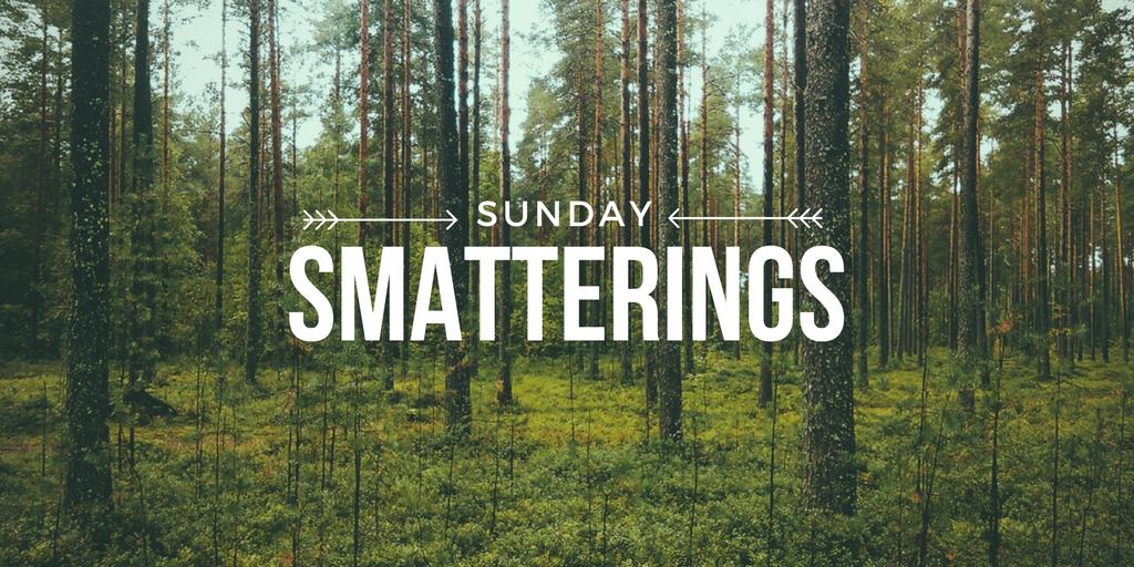 Sunday Smatterings 10.9.16