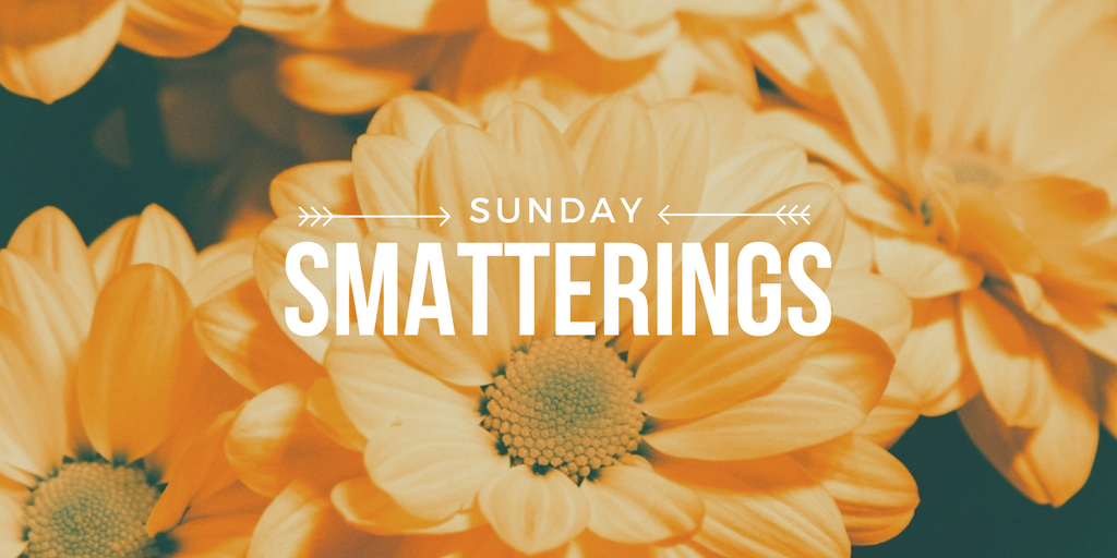 Sunday Smatterings 11.6.16