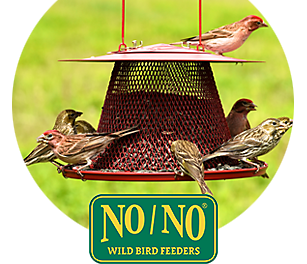 NO/NO wild bird feeders