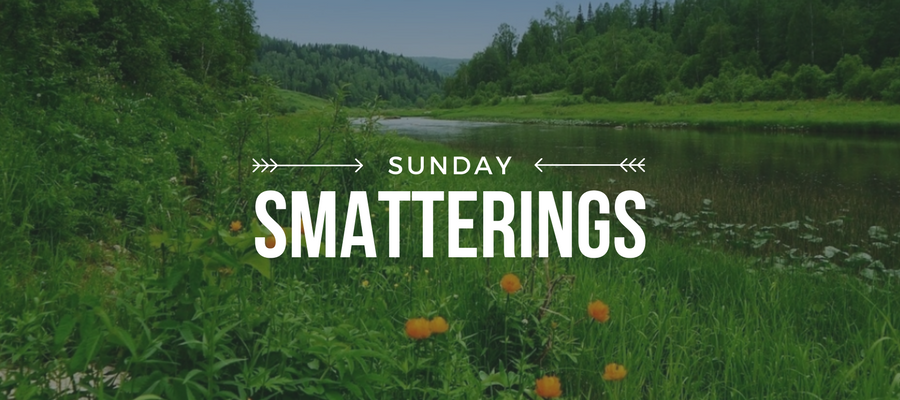Sunday Smatterings 6.4.17