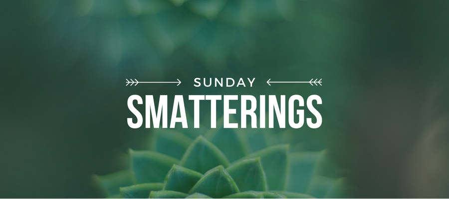 Sunday Smatterings 6.18.17