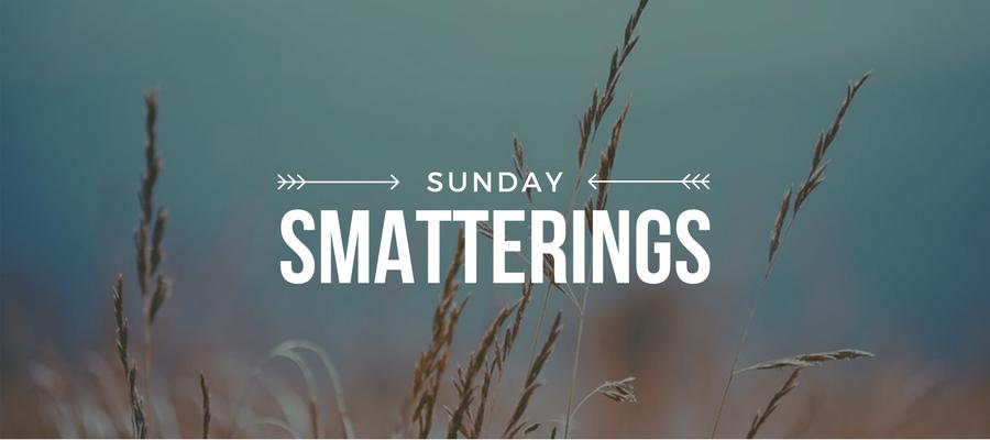 Sunday Smatterings 6.25.17