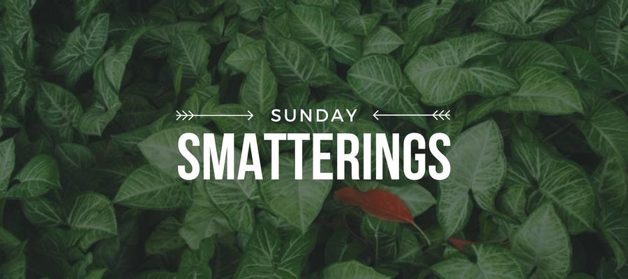 Sunday Smatterings 8.20.17